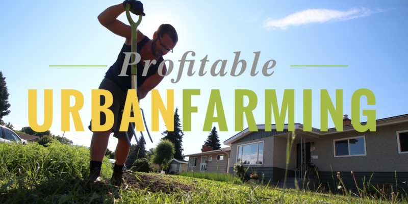 profitable-urban-farming-course-main