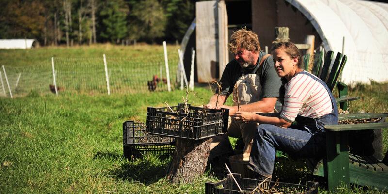 neversink-farm-videos
