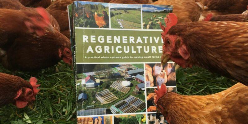 ridgedale farm book