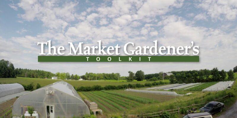 market gardener film